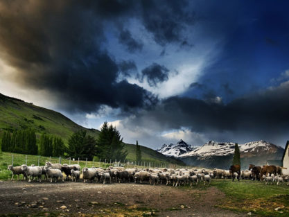 Patagonian Ranch