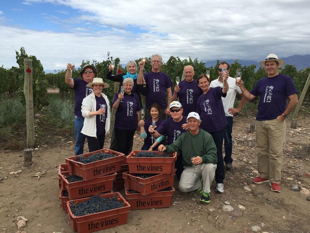 Mendoza Harvest Season