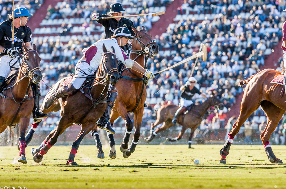 Polo players in Argentina Open