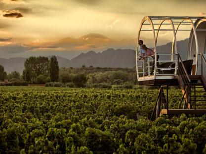 Accommodation in Mendoza