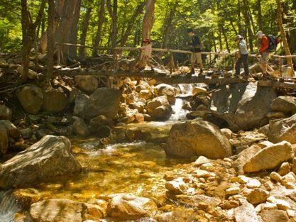 Guided hike of Nahuel Huapi