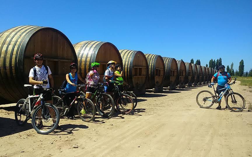 Biking in Mendoza Vineyards