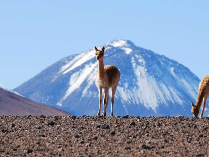 Hikes in Atacama Desert