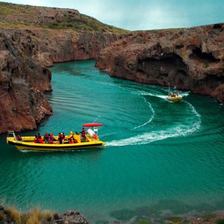 Expeditions to discover the amazing wildlife of Puerto Deseado