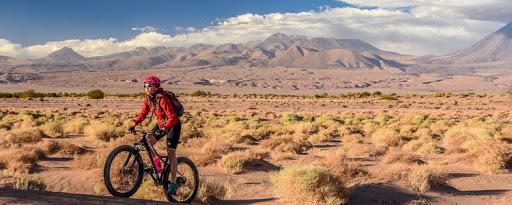 Activities in Atacama