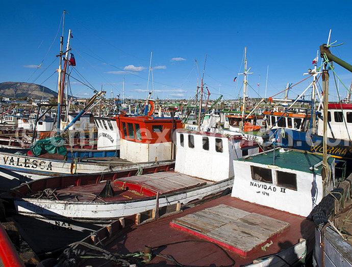 Puerto Natales Fishing Pier