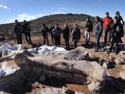 Paleontology Trips