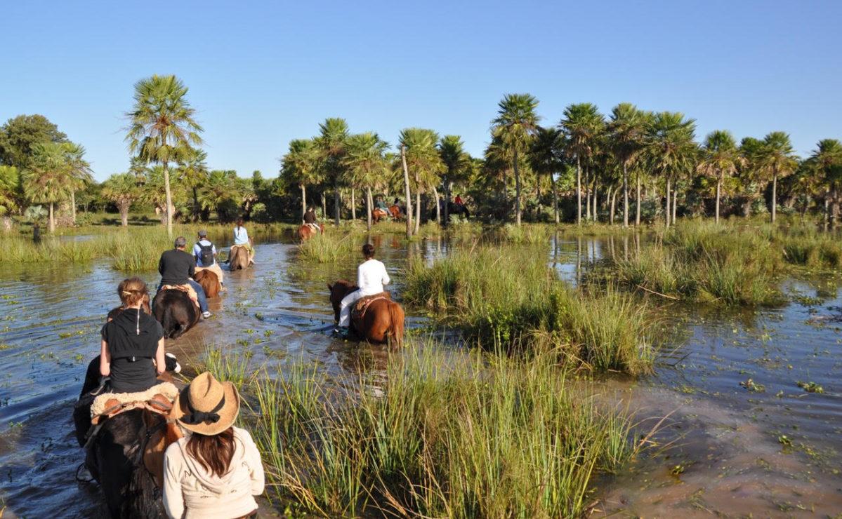 Horse Rides in Iberá Wetlands